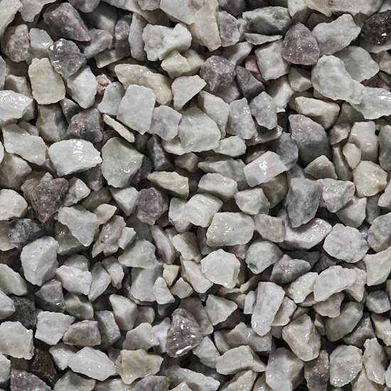 Labrador-White-3 Dry