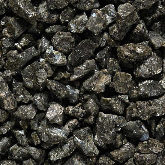 Labrador-Zwart-3 Dry